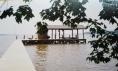 James River Property