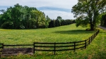 14.9 Acres For Sale in Goochland: